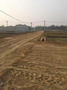 1500 Sq.ft Residential Plot for Sale in Gomti Nagar, Lucknow