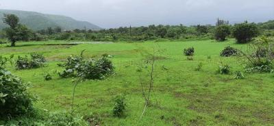 Gallery Cover Image of  Sq.ft Residential Plot for buy in Panvel for 700000