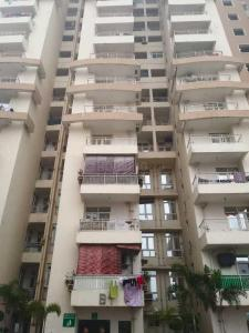 Gallery Cover Image of 950 Sq.ft 3 BHK Apartment for rent in Earthcon Sanskriti, Noida Extension for 8000