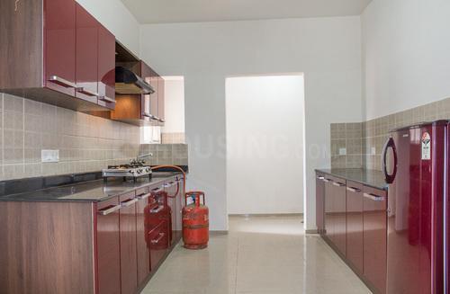 Kitchen Image of Ef08 Banyan Tree in Bellandur