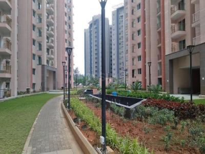 Gallery Cover Image of 2210 Sq.ft 3 BHK Apartment for rent in Hoodi for 43000