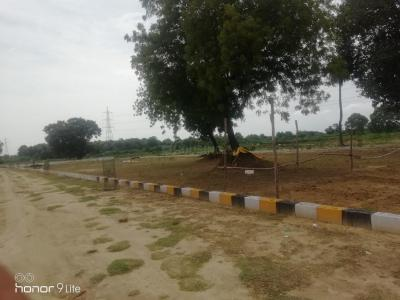 Gallery Cover Image of  Sq.ft Residential Plot for buy in Gomti Nagar for 1300000