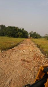 2160 Sq.ft Residential Plot for Sale in Joka, Kolkata
