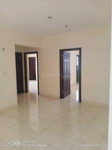 Gallery Cover Image of 1760 Sq.ft 3 BHK Apartment for rent in Salarpuria Sattva Serenity, HSR Layout for 38000