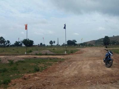 Gallery Cover Image of  Sq.ft Residential Plot for buy in Phaphamau for 651000