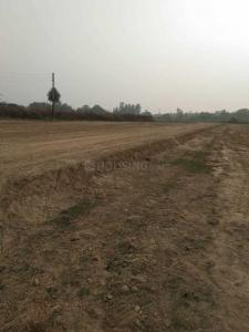 Gallery Cover Image of  Sq.ft Residential Plot for buy in Rajendra Nagar for 601000