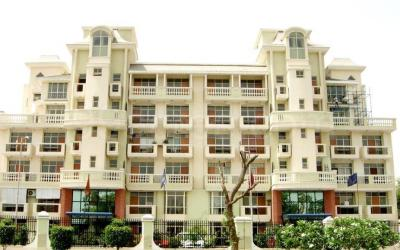 Gallery Cover Image of 2150 Sq.ft 3 BHK Apartment for rent in Sector 48 for 40000