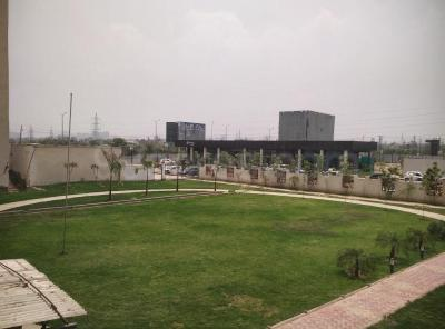 Gallery Cover Image of 1350 Sq.ft 3 BHK Apartment for rent in GOLF CITY, Sector 75 for 17000