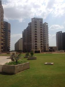 Gallery Cover Image of 1300 Sq.ft 2 BHK Apartment for buy in Avalon Rangoli, Kapariwas for 2530000