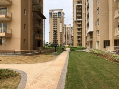Gallery Cover Image of 1900 Sq.ft 3 BHK Apartment for rent in Emaar Palm Gardens, Sector 84 for 20000