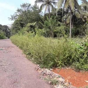 Gallery Cover Image of  Sq.ft Residential Plot for buy in Thana for 3300000