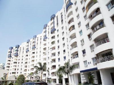 Gallery Cover Image of 1250 Sq.ft 2 BHK Apartment for rent in Wanwadi for 22000