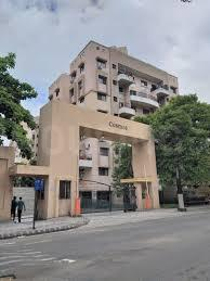 Gallery Cover Image of 1100 Sq.ft 2 BHK Apartment for rent in Cosmos Prime, Magarpatta City for 20000