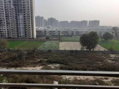 Gallery Cover Image of 915 Sq.ft 2 BHK Apartment for rent in Amolik Heights, Sector 88 for 10000