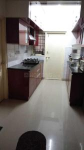 Gallery Cover Image of 1040 Sq.ft 2 BHK Apartment for rent in Krishnarajapura for 20000