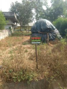 133 Sq.ft Residential Plot for Sale in Ithanagar, Tenali