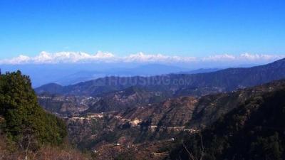 99000 Sq.ft Residential Plot for Sale in Nathuakhan, Nainital