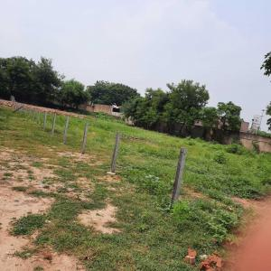 1350 Sq.ft Residential Plot for Sale in Bodakdev, Ahmedabad