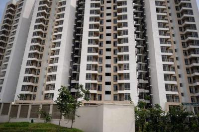 Gallery Cover Image of 1912 Sq.ft 3 BHK Apartment for rent in Sector 128 for 21000