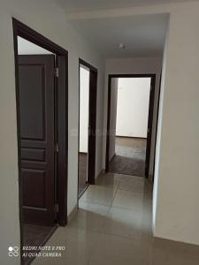Hall Image of Co-living Apartment in Sector 168