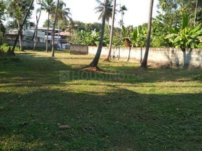 720 Sq.ft Residential Plot for Sale in Eloor, Kochi