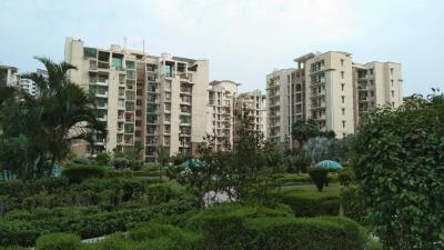 Gallery Cover Image of 1440 Sq.ft 3 BHK Apartment for rent in PI Greater Noida for 14000