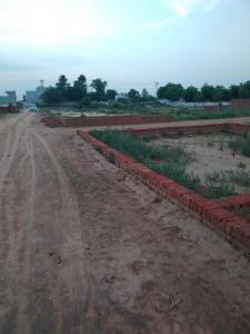 100 Sq.ft Residential Plot for Sale in Noida Extension, Greater Noida