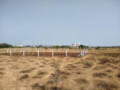 1089 Sq.ft Residential Plot for Sale in Ulwe, Navi Mumbai