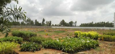 Gallery Cover Image of  Sq.ft Residential Plot for buy in Rayasandra for 2765328