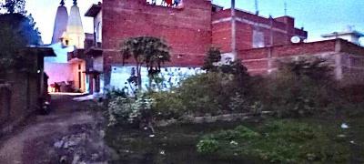 2000 Sq.ft Residential Plot for Sale in Pichhor, Jhansi