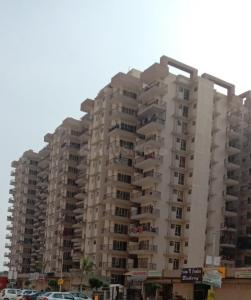 Gallery Cover Image of 800 Sq.ft 2 BHK Apartment for rent in Sector 81 for 6500