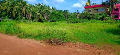 4791 Sq.ft Residential Plot for Sale in Nittur, Payynur