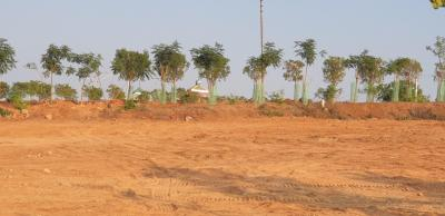 4320 Sq.ft Residential Plot for Sale in Mazidpur, Hyderabad