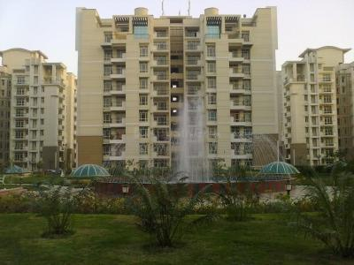 Gallery Cover Image of 1265 Sq.ft 3 BHK Apartment for buy in PI Greater Noida for 5300000