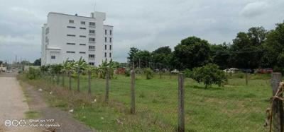 4000 Sq.ft Residential Plot for Sale in Pallakadiyam, Rajahmundry