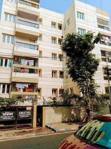 Gallery Cover Image of 1250 Sq.ft 2 BHK Apartment for rent in Alipore for 16000