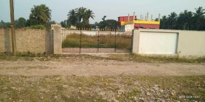 Gallery Cover Image of  Sq.ft Residential Plot for buy in Amtala for 500000