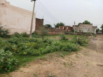 Gallery Cover Image of  Sq.ft Residential Plot for buy in Paldi Meena for 2300000