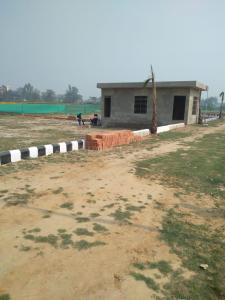 1001 Sq.ft Residential Plot for Sale in Anora Kala, Lucknow