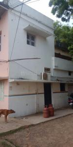 Gallery Cover Image of 2000 Sq.ft 4 BHK Independent House for buy in Keelakattalai for 11500000