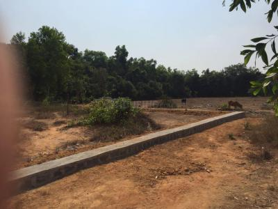 8800 Sq.ft Residential Plot for Sale in Saralebettu, Manipal