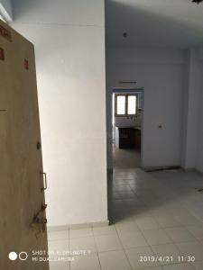 Gallery Cover Image of 675 Sq.ft 1 RK Apartment for rent in Ghodasar for 7000