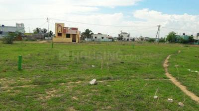 Gallery Cover Image of  Sq.ft Residential Plot for buy in Veppampattu for 1215000