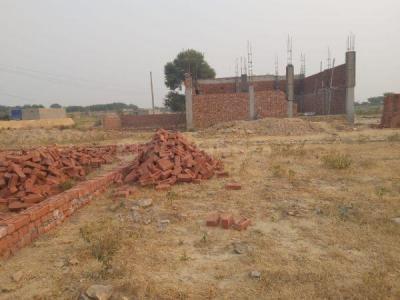 900 Sq.ft Residential Plot for Sale in Yeida, Greater Noida