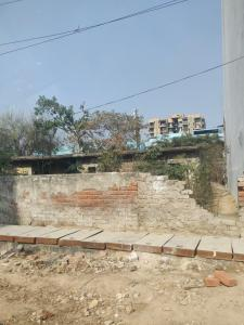 2250 Sq.ft Residential Plot for Sale in Sector 11 Dwarka, New Delhi