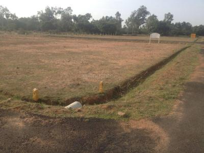 Gallery Cover Image of 1900 Sq.ft Residential Plot for buy in Urapakkam for 3040000