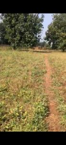 2045 Sq.ft Residential Plot for Sale in Bhiwandi, Thane