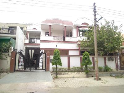 Gallery Cover Image of 3000 Sq.ft 3 BHK Independent Floor for rent in Raj Nagar for 22000
