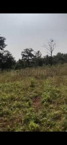 5500 Sq.ft Residential Plot for Sale in Bhiwandi, Thane
