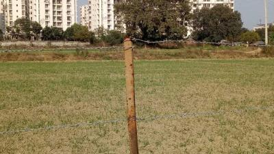 770 Sq.ft Residential Plot for Sale in Sector 89, Faridabad